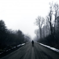 Alone  Man  Walking  Road  Mist  Trees Profile Picture
