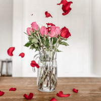 Valentines  Roses  Flowers  Water   Vase Profile Picture